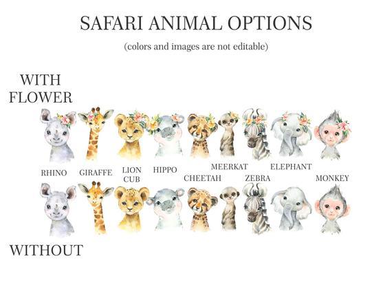 Safari animal options
